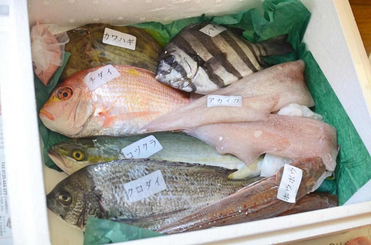 富山からのお取り寄せ鮮魚セット