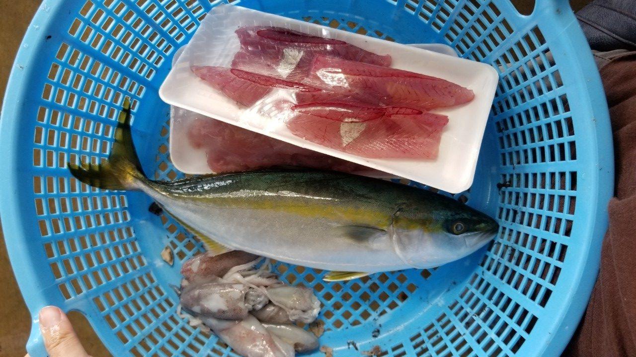 購入した鮮魚たち