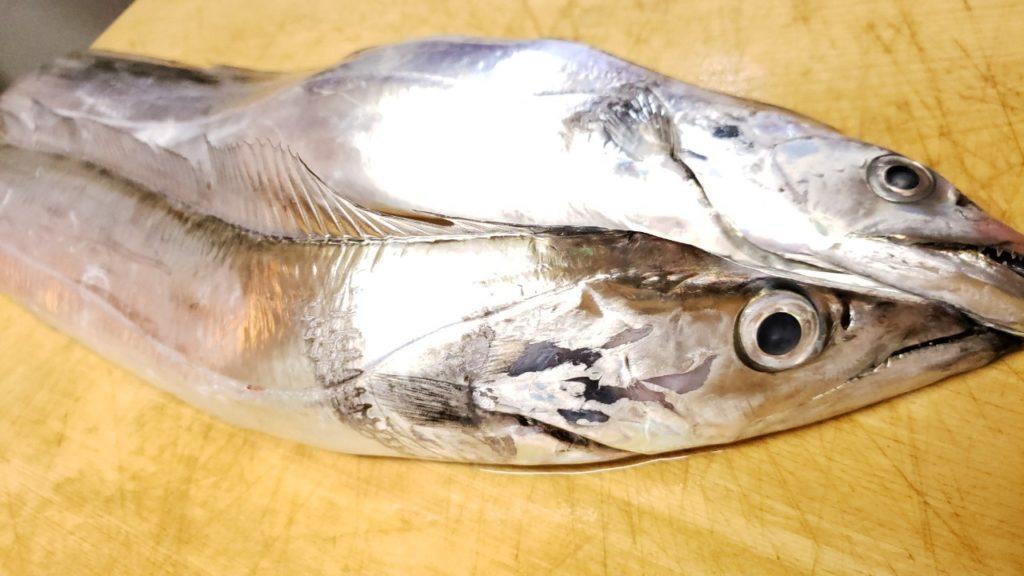 もらいもののギラギラ太刀魚