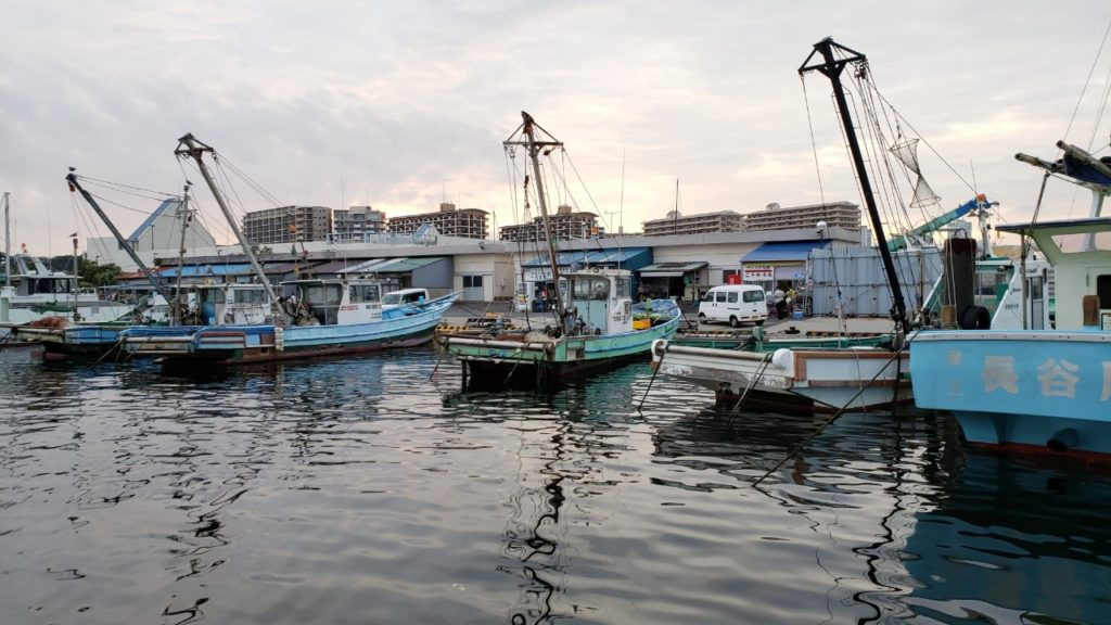 新安浦の港